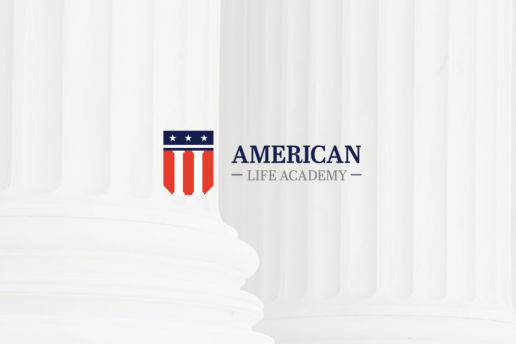 american logo usa flag