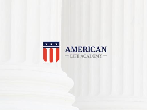 american logo usa flag