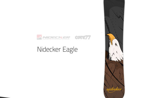 custom eagle design snowboard